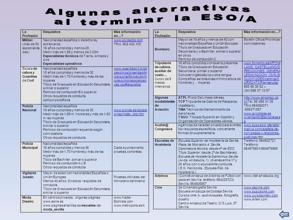 Algunas alternativas al terminar la ESO/A La Profesión Requisitos