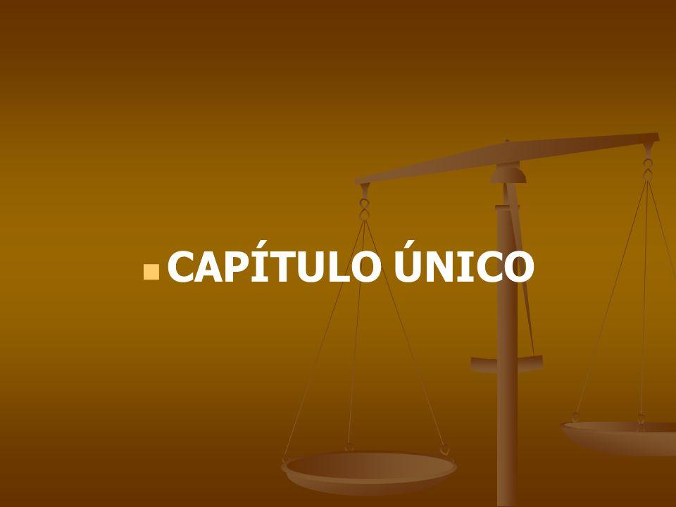 CAPÍTULO ÚNICO