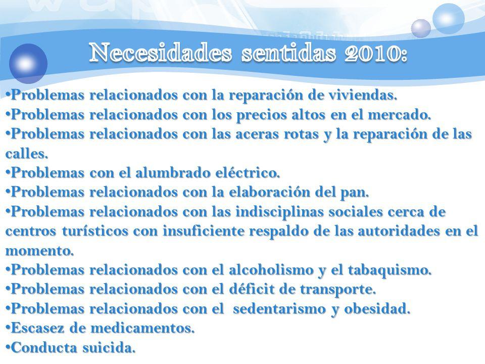 Necesidades sentidas 2010: