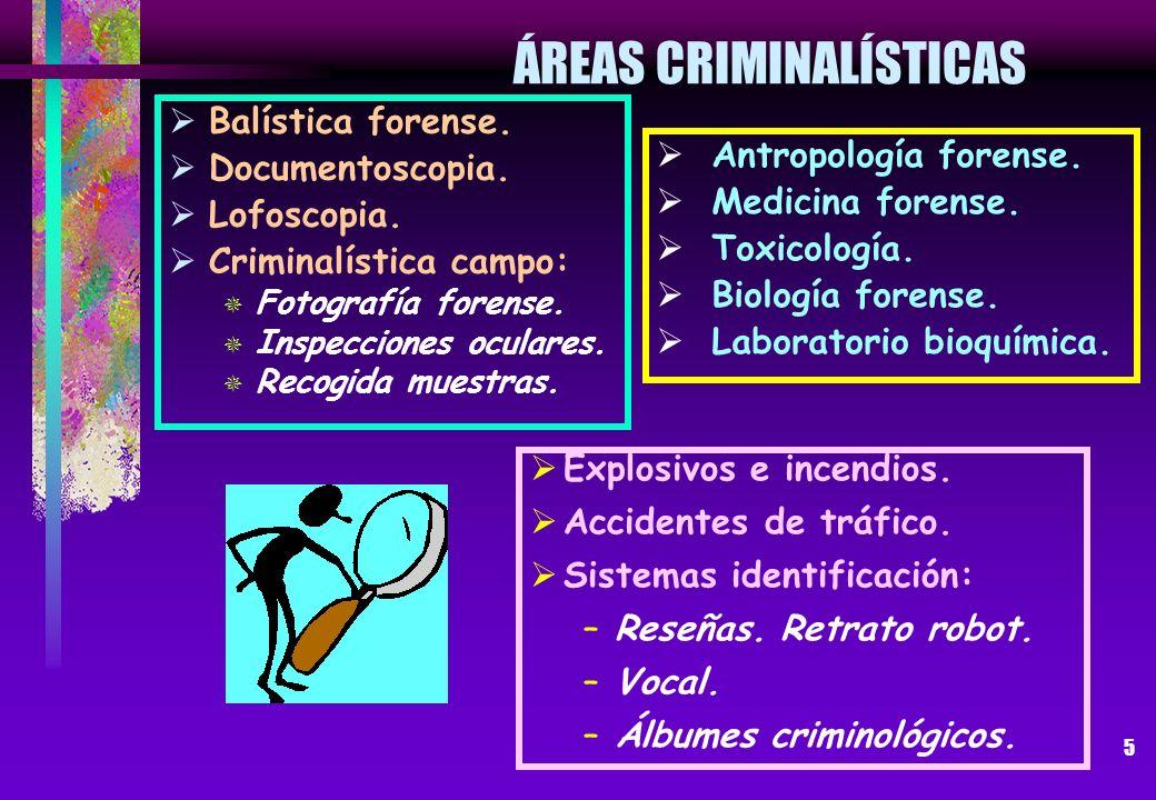 ÁREAS CRIMINALÍSTICAS