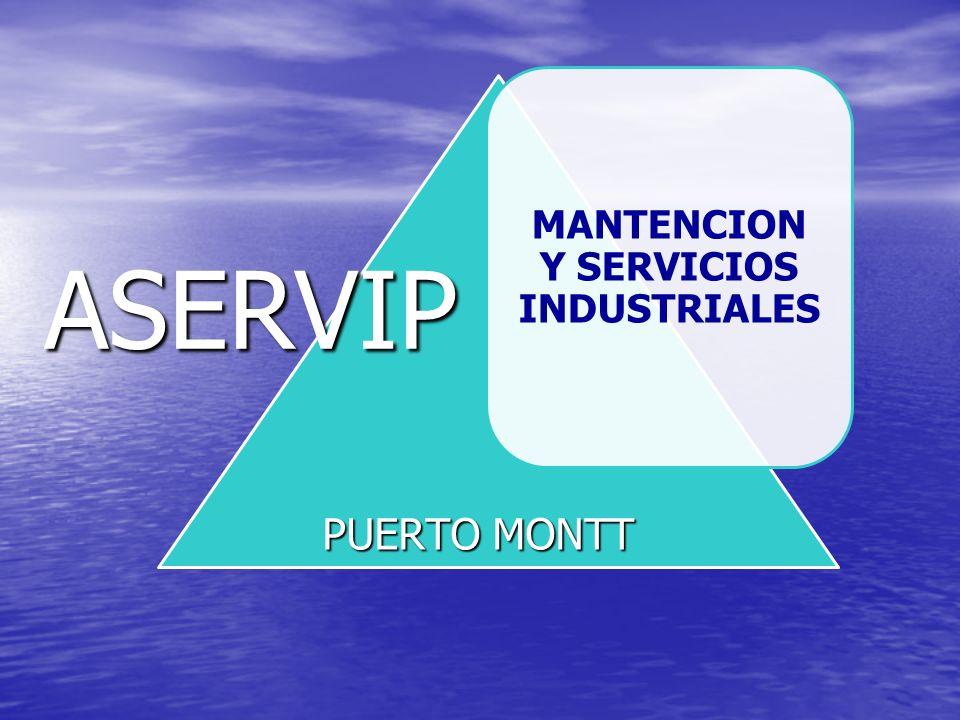 MANTENCION Y SERVICIOS INDUSTRIALES