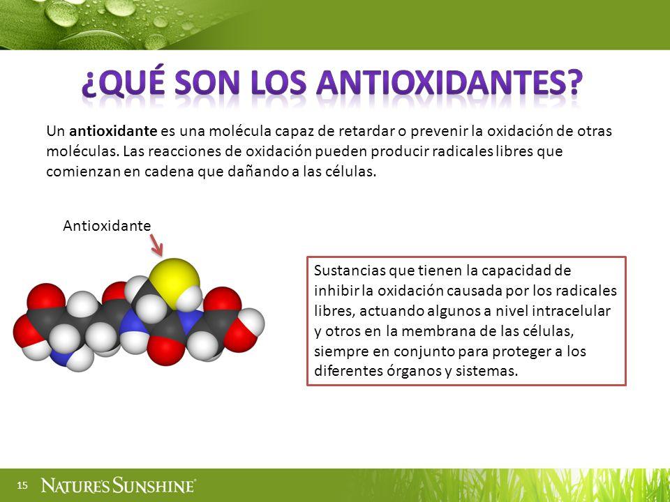 ¿Qué son los antioxidantes