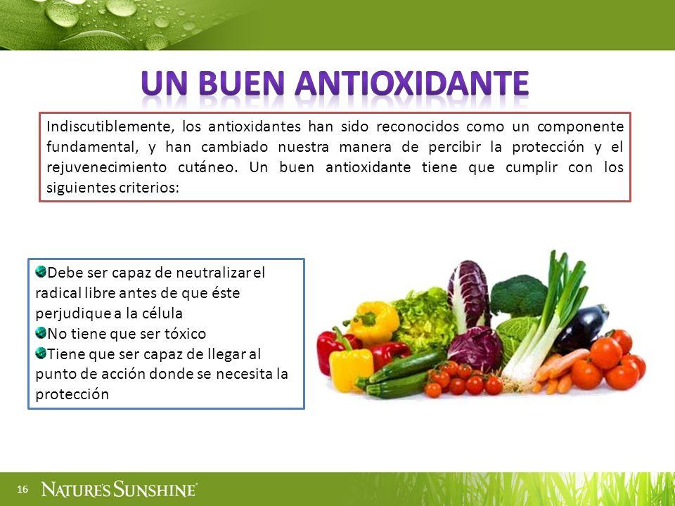 Un buen antioxidante