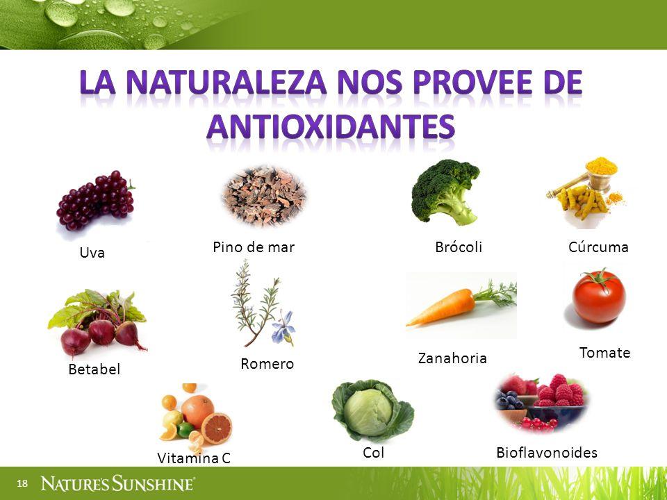 La naturaleza nos provee de antioxidantes