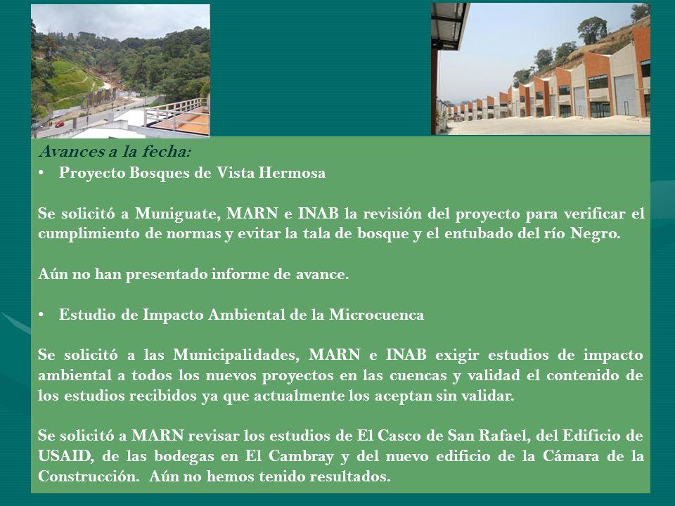 Avances a la fecha: Proyecto Bosques de Vista Hermosa