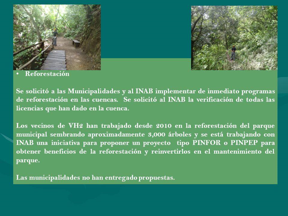 Avances a la fecha: Reforestación