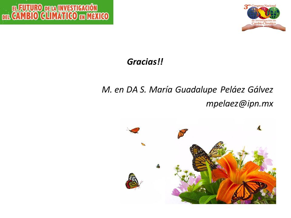 Gracias!! M. en DA S. María Guadalupe Peláez Gálvez mpelaez@ipn.mx