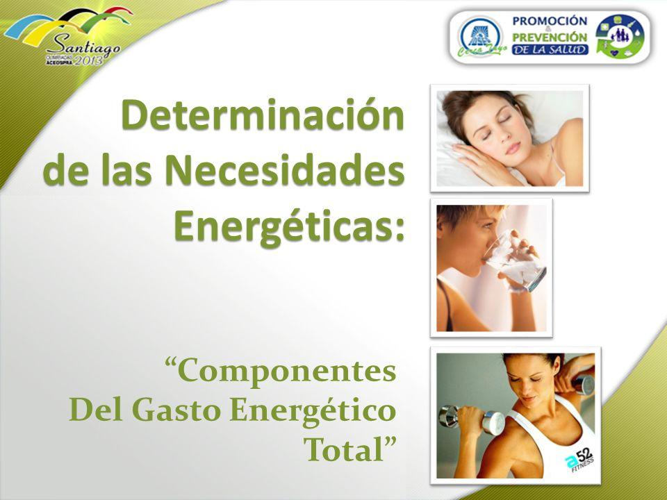 Determinación de las Necesidades Energéticas: