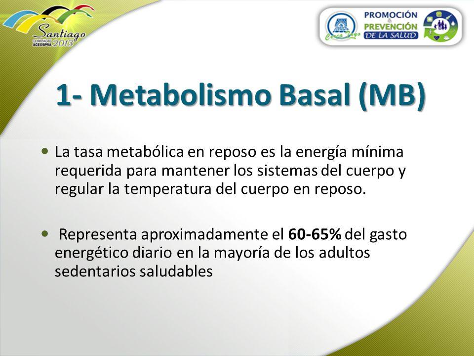 1- Metabolismo Basal (MB)