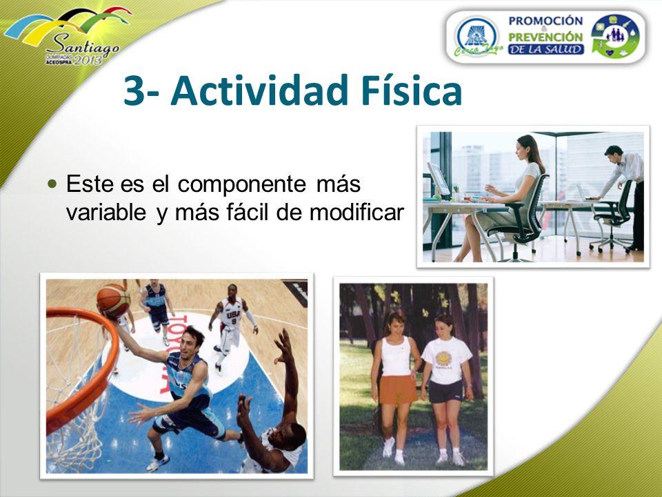 3- Actividad Física Este es el componente más variable y más fácil de modificar