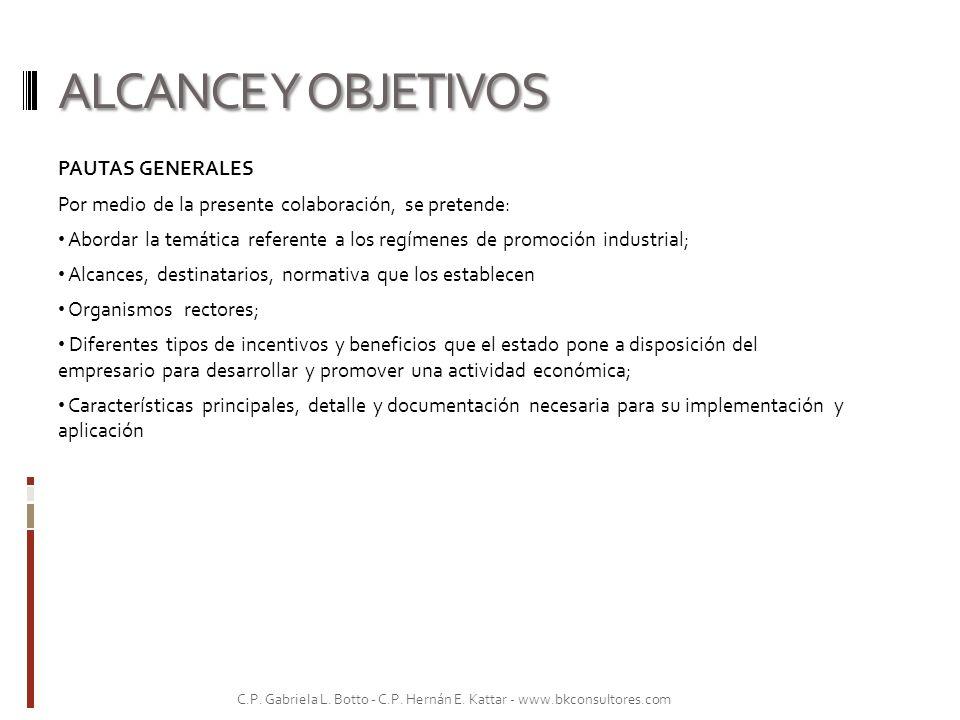 ALCANCE Y OBJETIVOS PAUTAS GENERALES