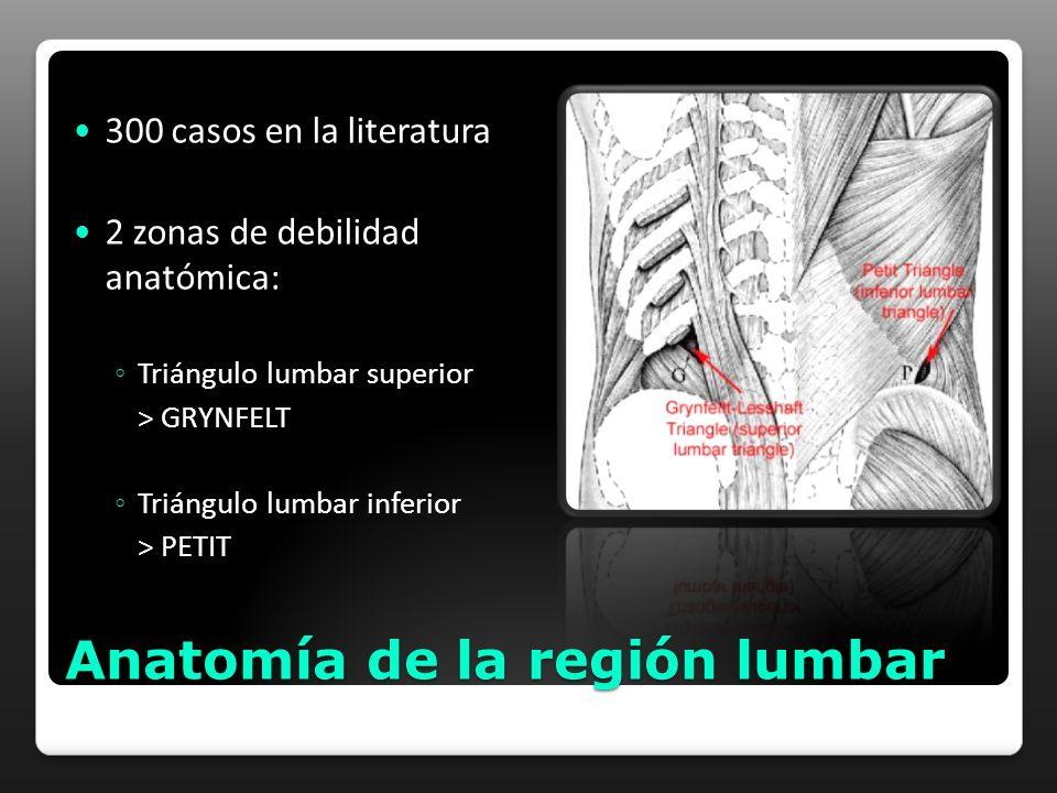 Anatomía de la región lumbar