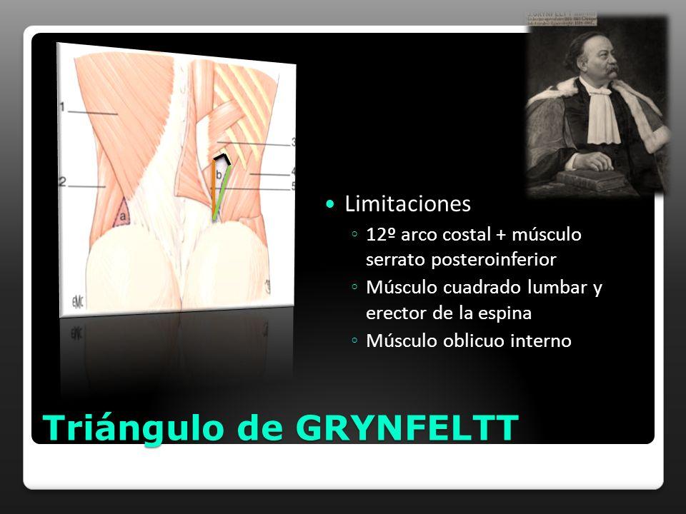 Triángulo de GRYNFELTT