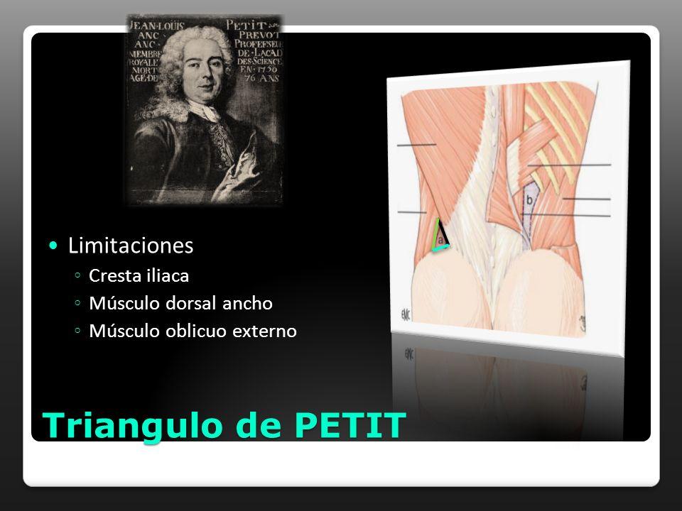 Triangulo de PETIT Limitaciones Cresta iliaca Músculo dorsal ancho