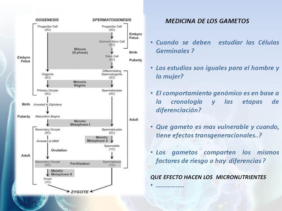MEDICINA DE LOS GAMETOS