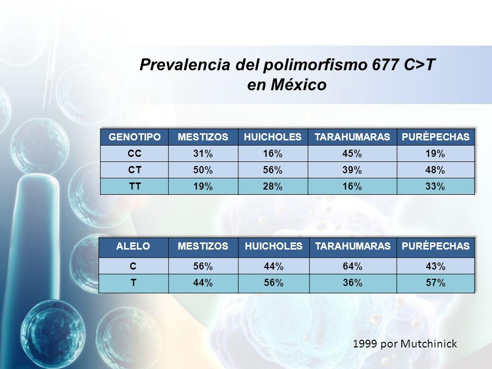 Prevalencia del polimorfismo 677 C>T