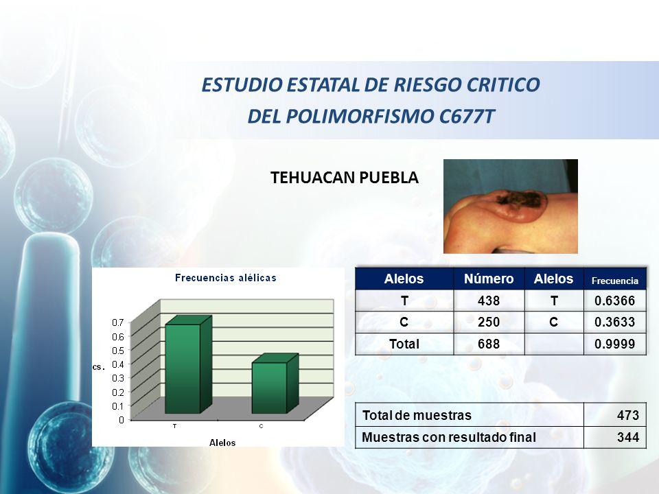 ESTUDIO ESTATAL DE RIESGO CRITICO