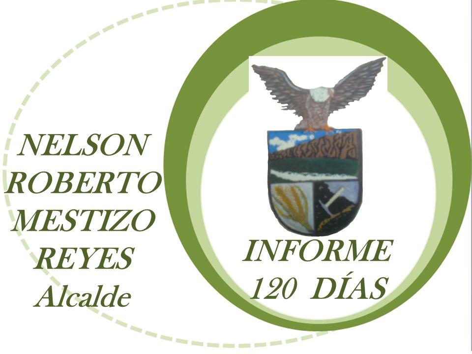 NELSON ROBERTO MESTIZO REYES