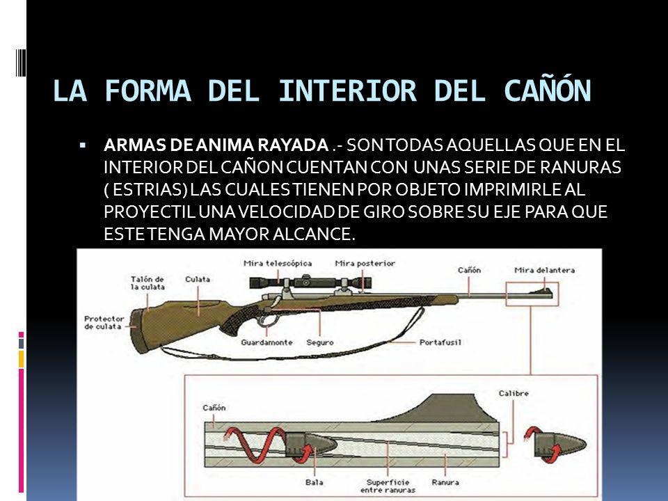 LA FORMA DEL INTERIOR DEL CAÑÓN