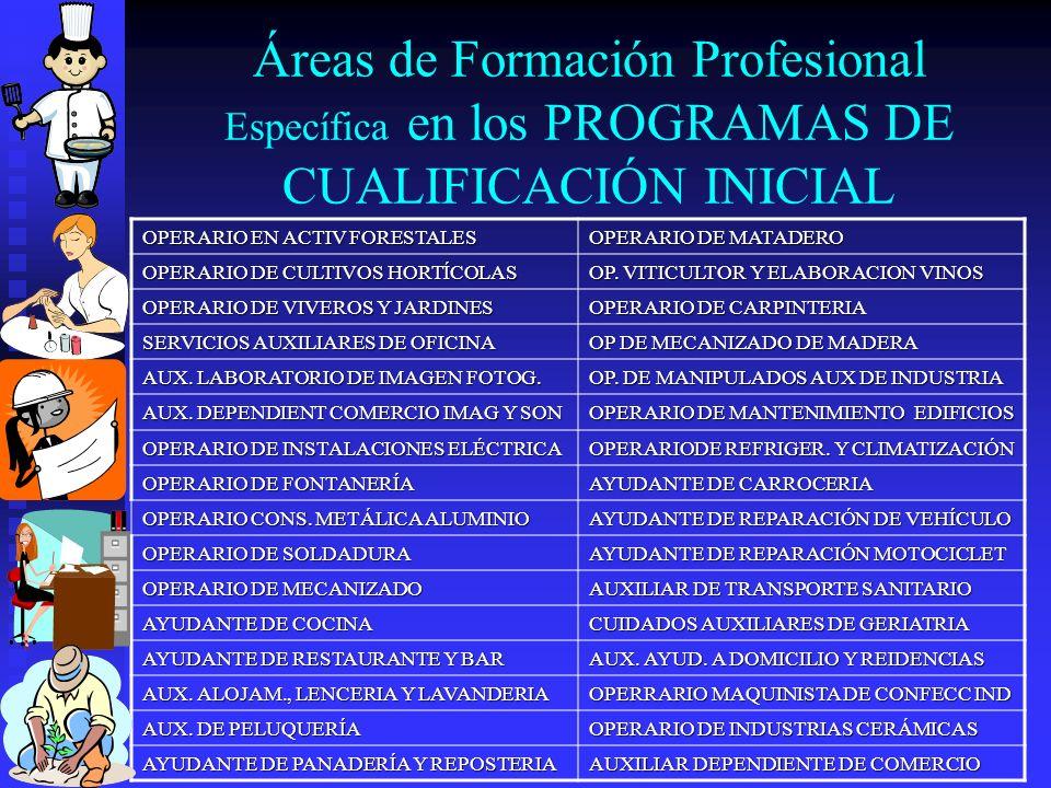 Áreas de Formación Profesional Específica en los PROGRAMAS DE CUALIFICACIÓN INICIAL