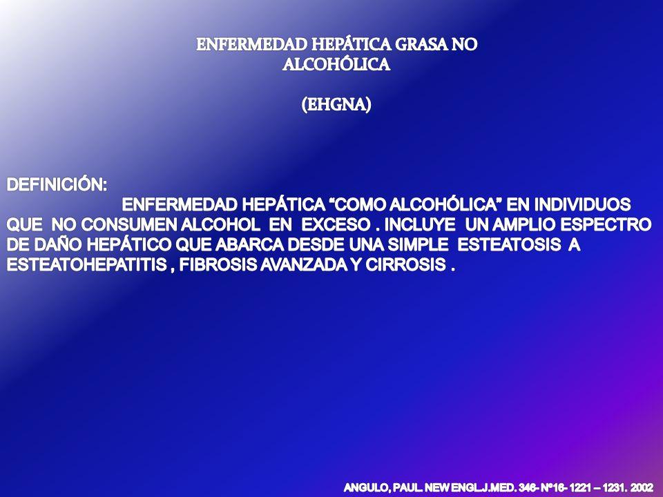 ENFERMEDAD HEPÁTICA GRASA NO ALCOHÓLICA