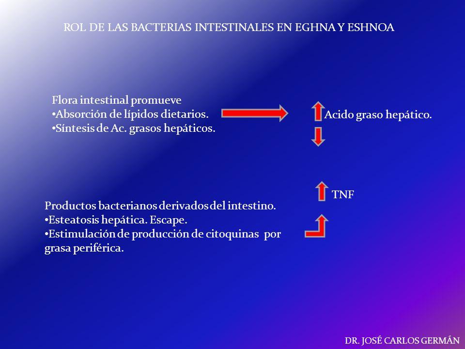 ROL DE LAS BACTERIAS INTESTINALES EN EGHNA Y ESHNOA