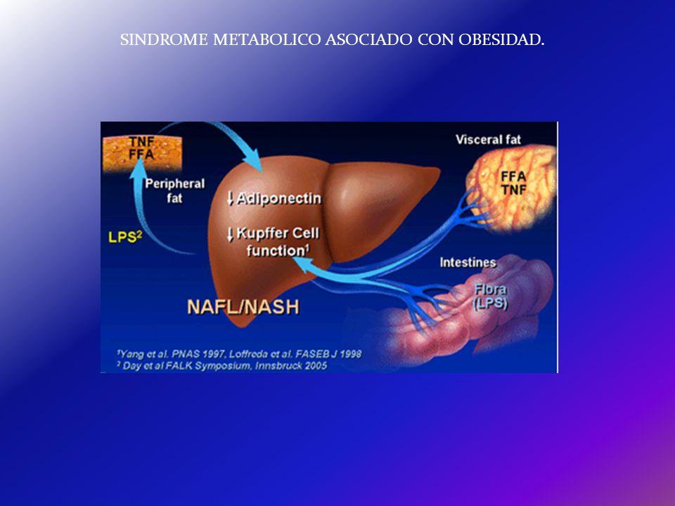 SINDROME METABOLICO ASOCIADO CON OBESIDAD.