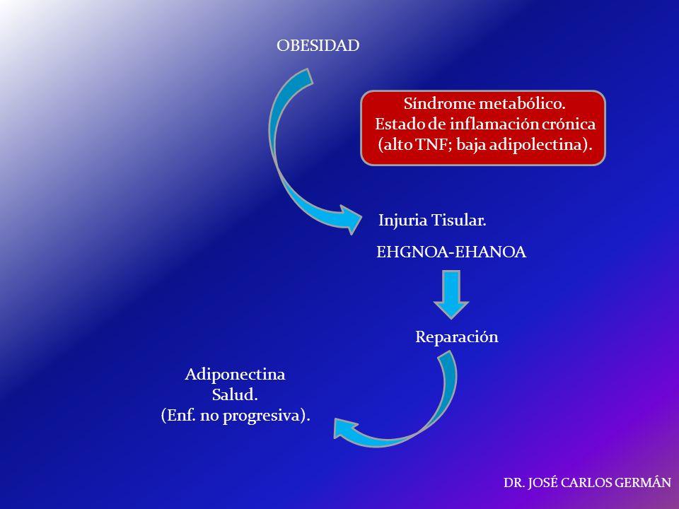 Estado de inflamación crónica (alto TNF; baja adipolectina).