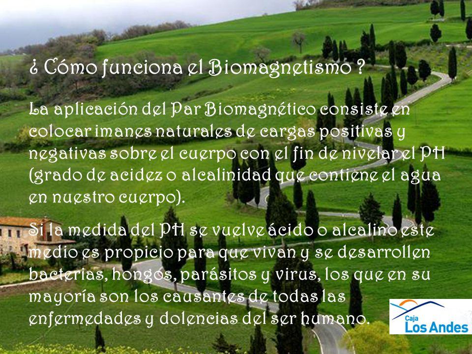 ¿ Cómo funciona el Biomagnetismo