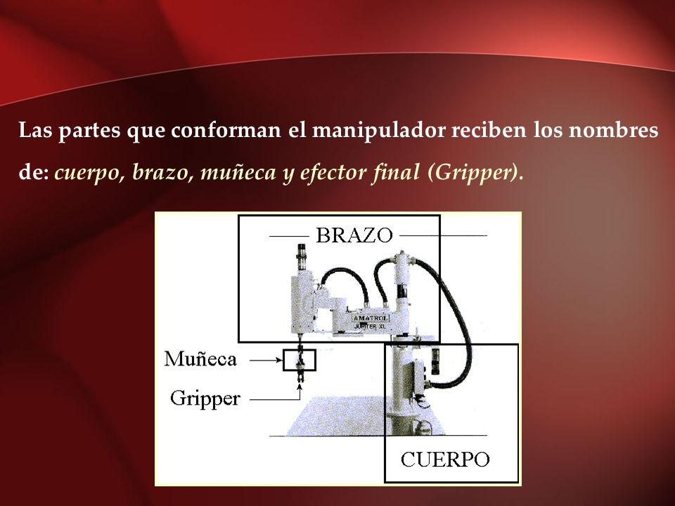 Las partes que conforman el manipulador reciben los nombres
