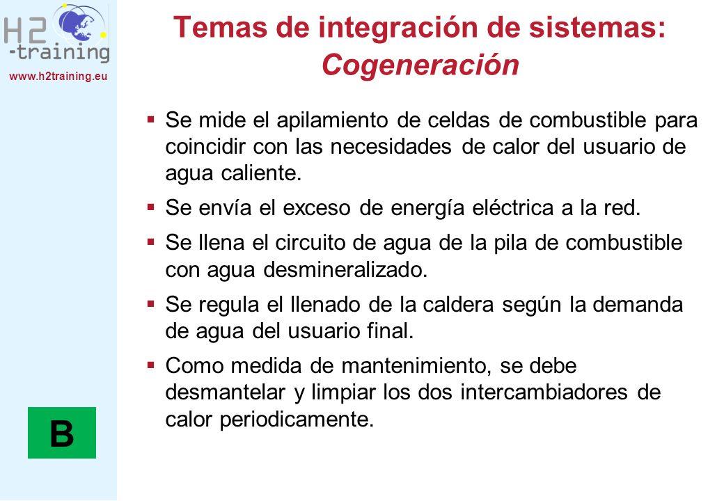 Temas de integración de sistemas: Cogeneración