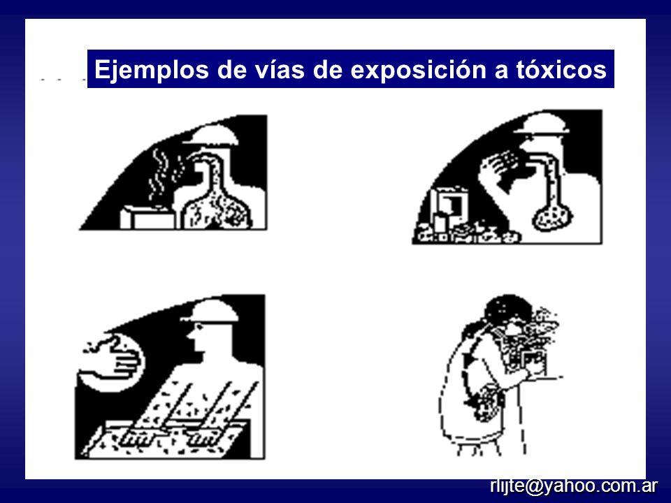 Cuatro rutas de exposición
