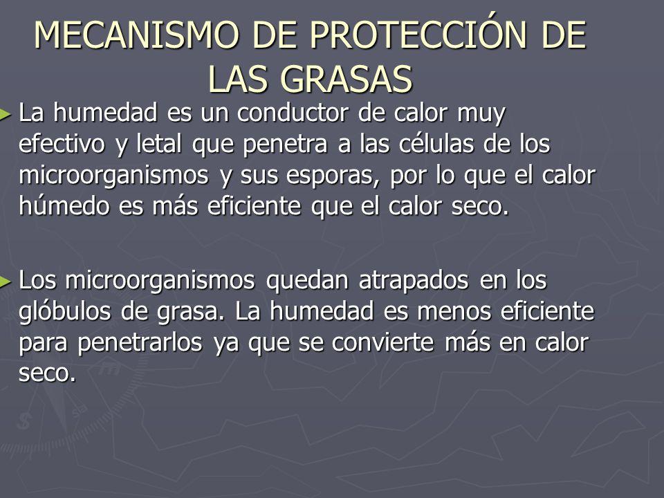 MECANISMO DE PROTECCIÓN DE LAS GRASAS