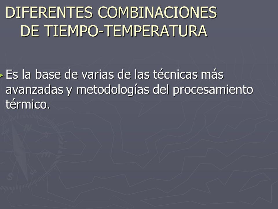DIFERENTES COMBINACIONES DE TIEMPO-TEMPERATURA