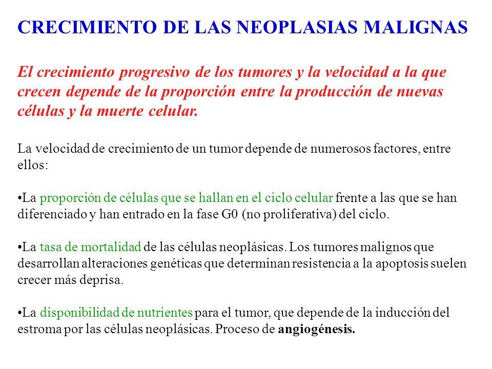 CRECIMIENTO DE LAS NEOPLASIAS MALIGNAS