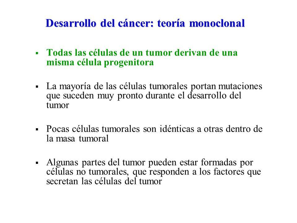 Desarrollo del cáncer: teoría monoclonal