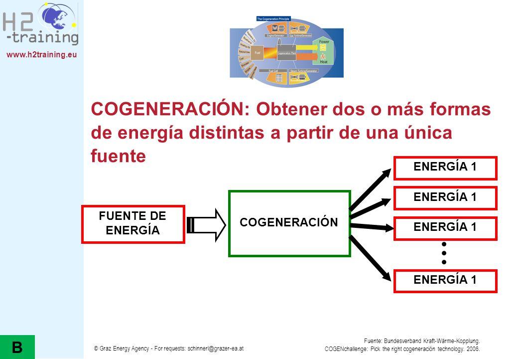 H2 Training Manual H2 Training Manual. COGENERACIÓN: Obtener dos o más formas de energía distintas a partir de una única fuente.