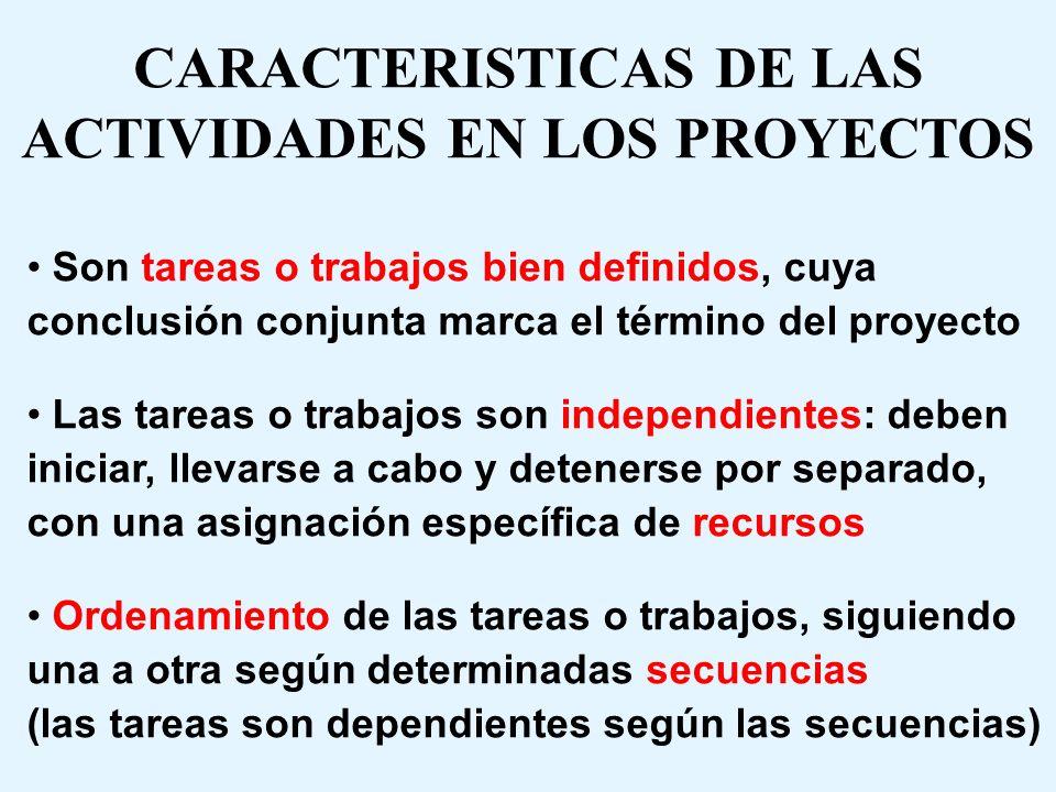 CARACTERISTICAS DE LAS ACTIVIDADES EN LOS PROYECTOS