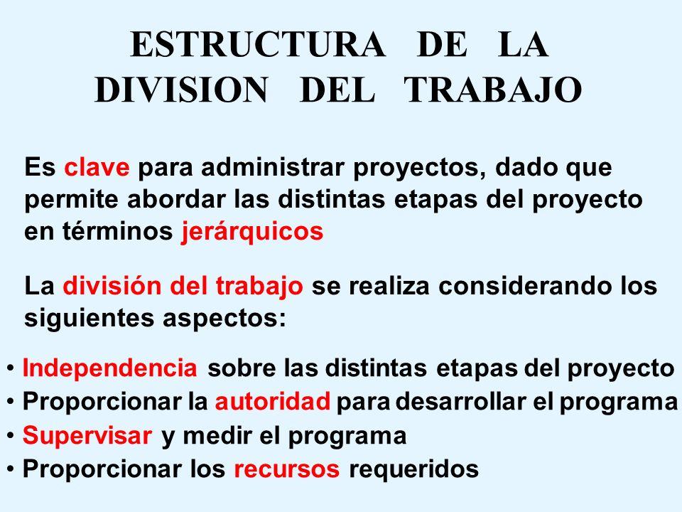 ESTRUCTURA DE LA DIVISION DEL TRABAJO