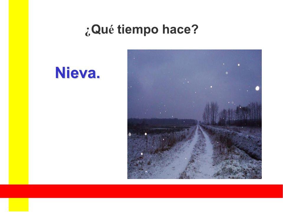 ¿Qué tiempo hace Nieva.