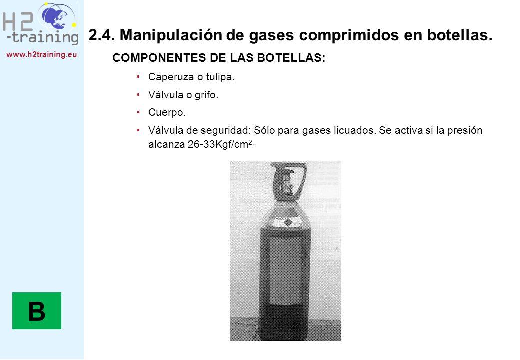 B 2.4. Manipulación de gases comprimidos en botellas.