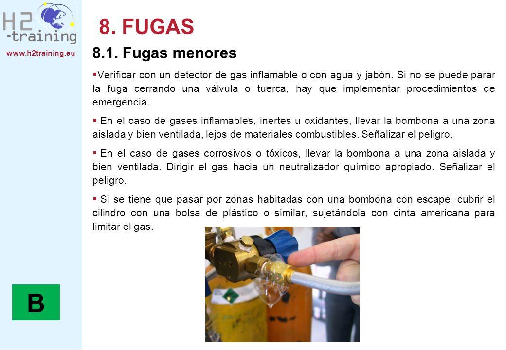 8. FUGAS 8.1. Fugas menores.