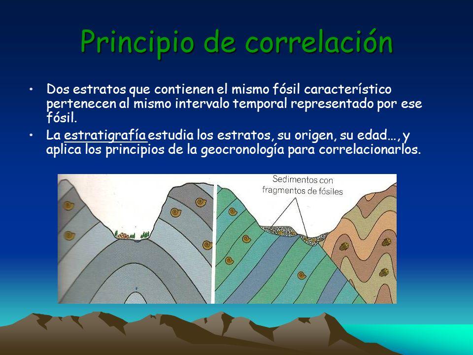 Principio de correlación