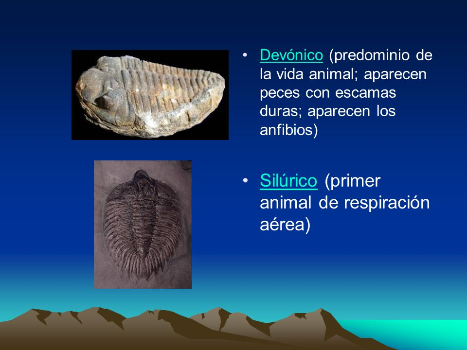 Silúrico (primer animal de respiración aérea)