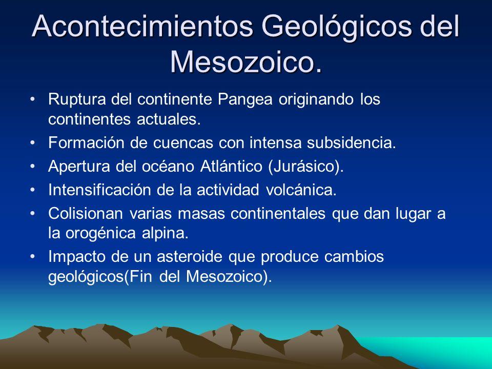 Acontecimientos Geológicos del Mesozoico.