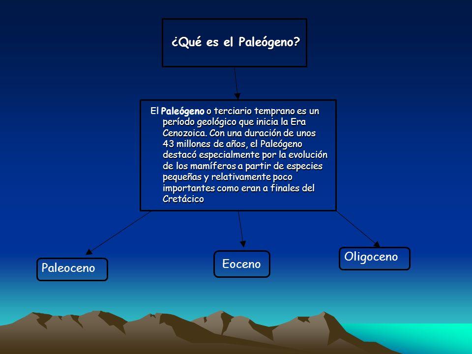 ¿Qué es el Paleógeno Oligoceno Eoceno Paleoceno