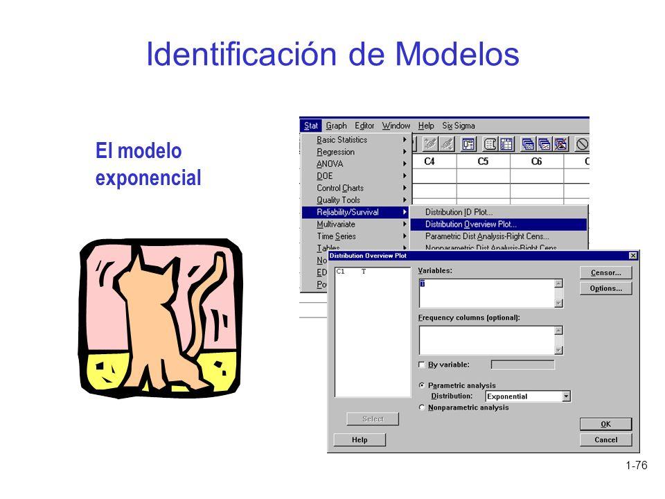 Identificación de Modelos