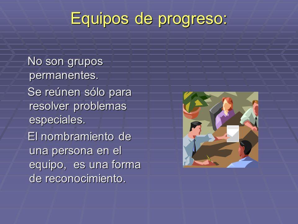 Equipos de progreso: No son grupos permanentes.