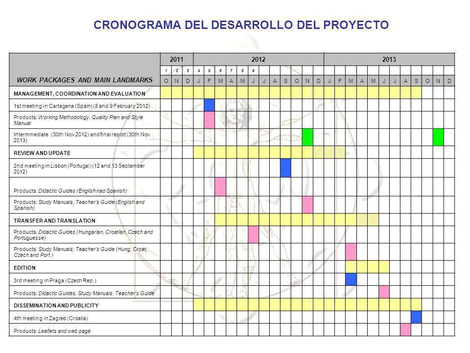 CRONOGRAMA DEL DESARROLLO DEL PROYECTO