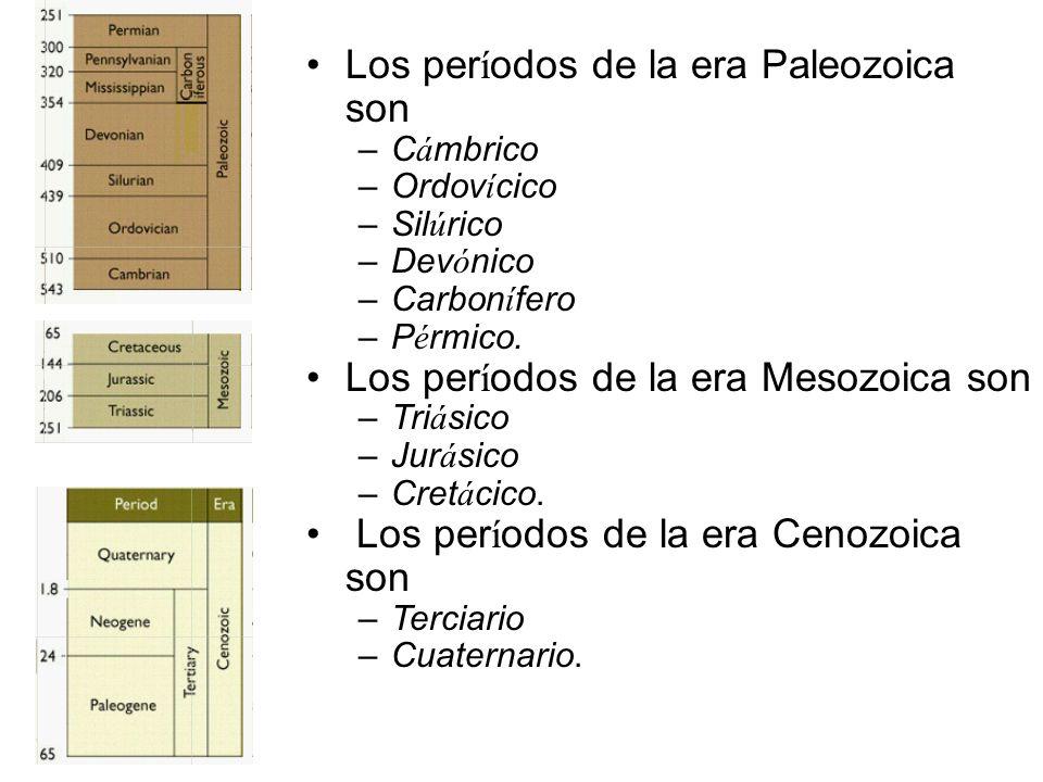 Los períodos de la era Paleozoica son
